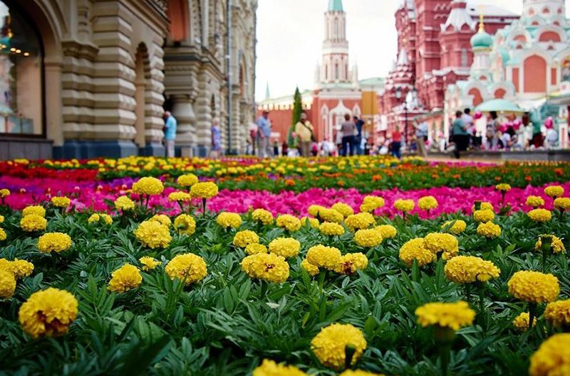 Праздник цветов в москве 2017